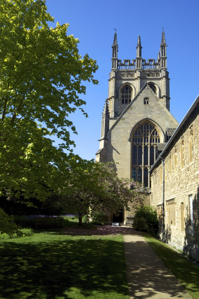 Stock Photo: 4042-1655 Chapel of a college, Merton College Chapel, Oxford University, Oxfordshire, England