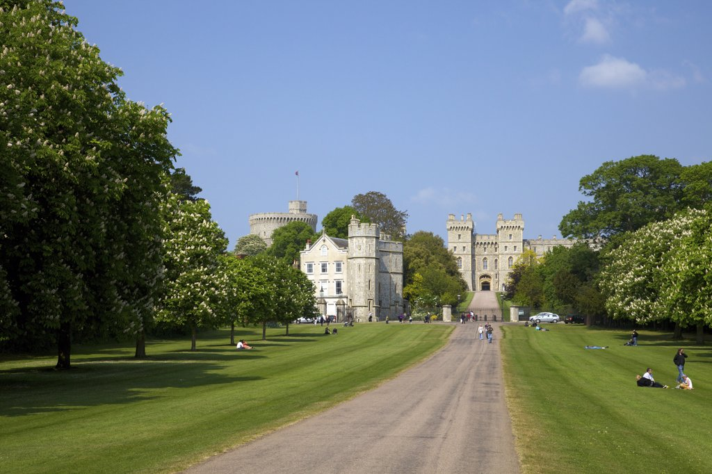 Path leading to a castle, Windsor Castle, Windsor Great Park, Berkshire, England : Stock Photo