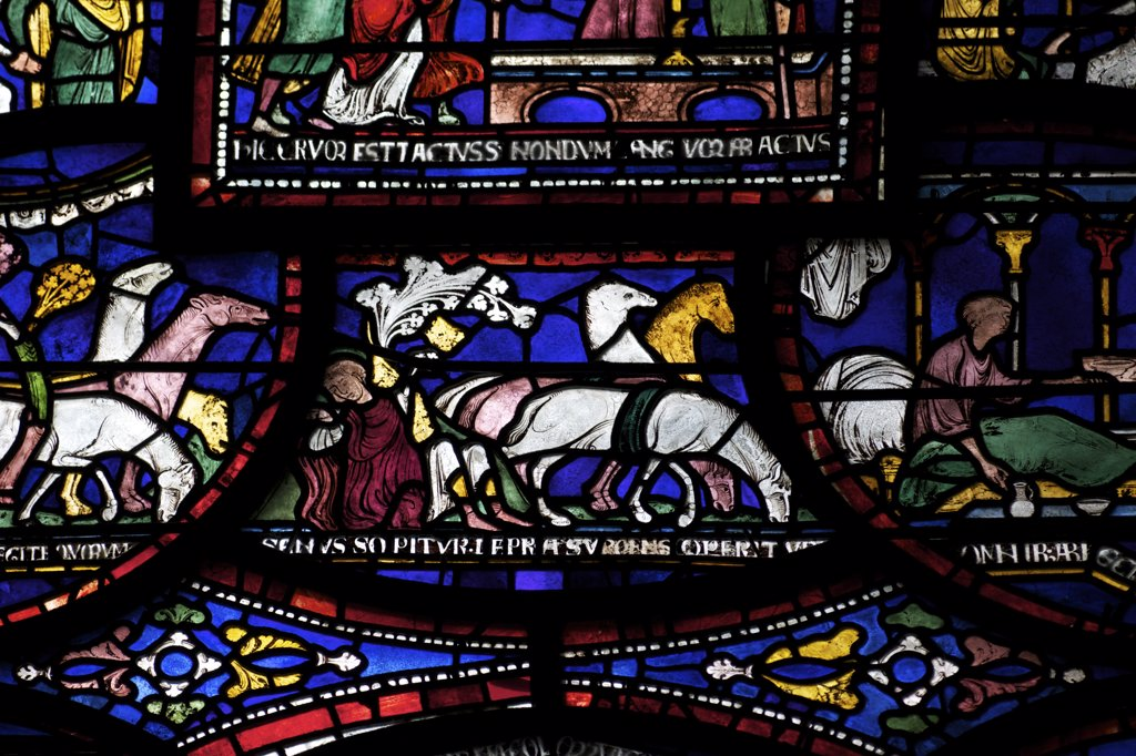 Stock Photo: 4042-1856 United Kingdom, Kent, Canterbury Cathedral, Trinity Chapel Ambulatory, Cure of Richard of Sunieve, Becket Miracle Window 6, medieval stained glass