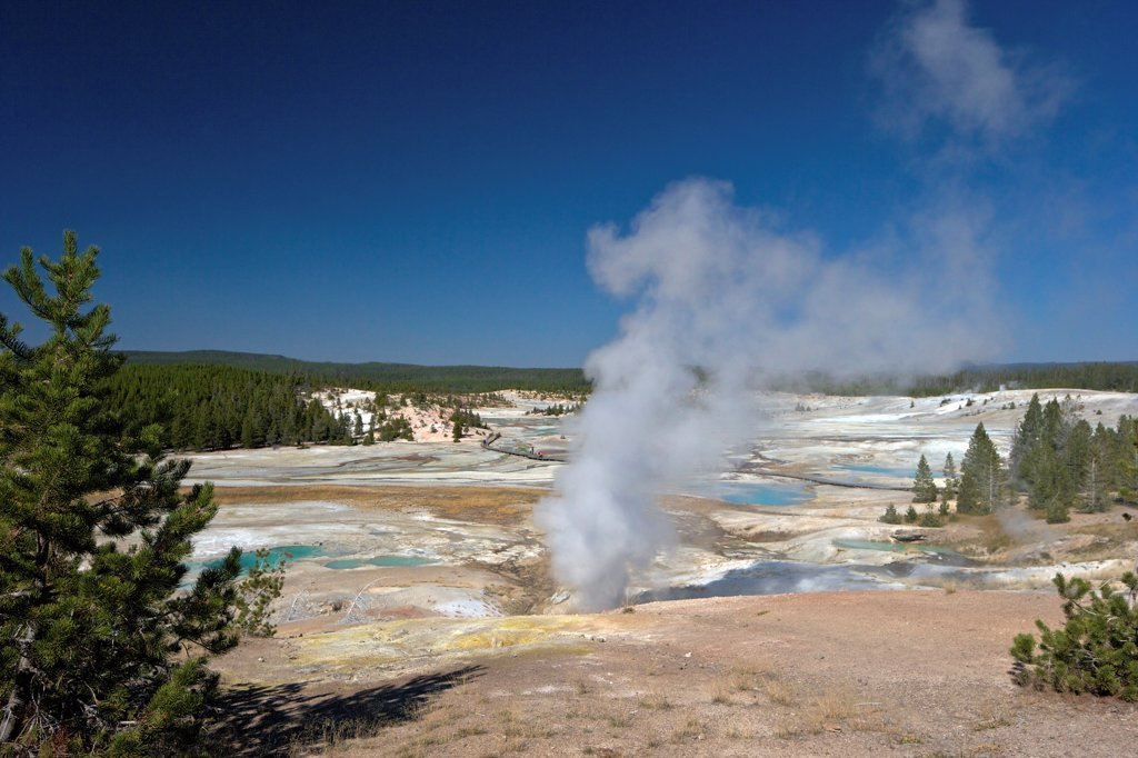 Stock Photo: 4042-2260 USA, Wyoming, Yellowstone National Park, Norris Geyser Basin, Black Growler Steam Vent in Porcelain Basin