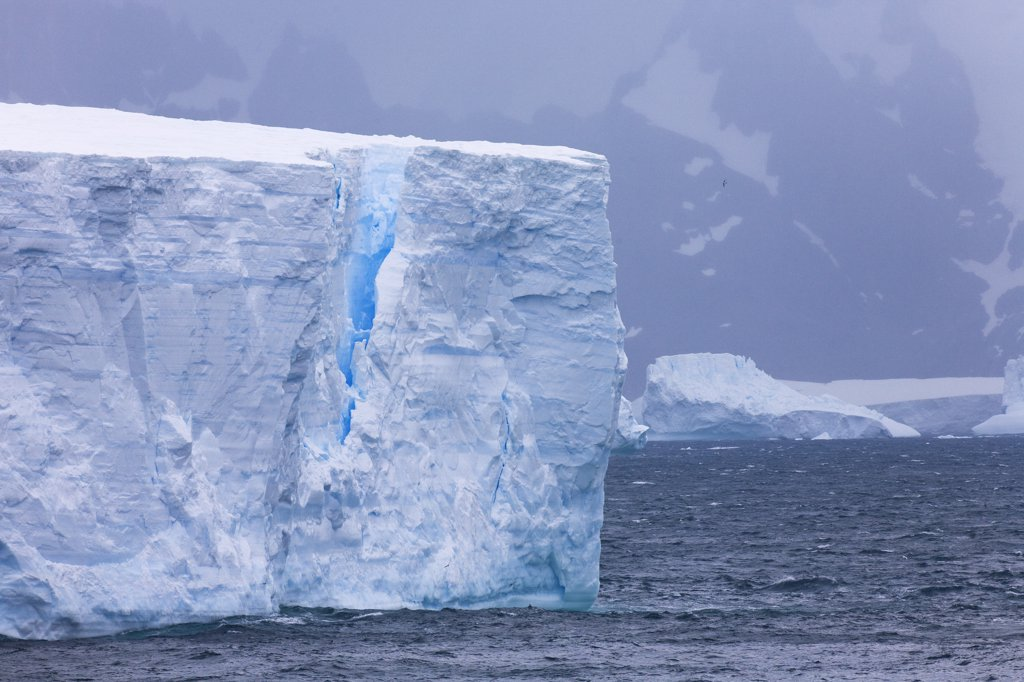 Tabular icebergs in the ocean, Cooper Bay, South Georgia : Stock Photo