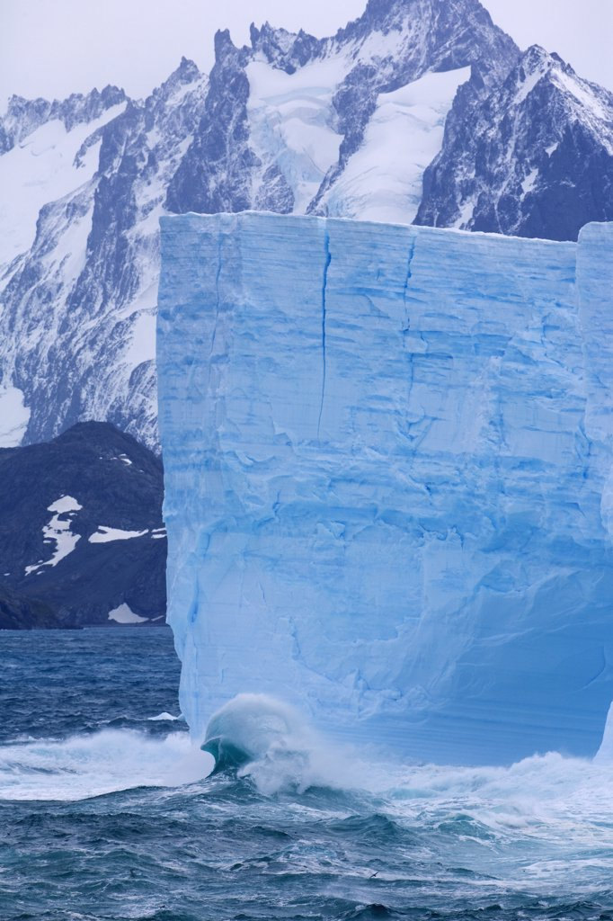 Stock Photo: 4042-659 Tabular icebergs in the ocean, Cooper Bay, South Georgia