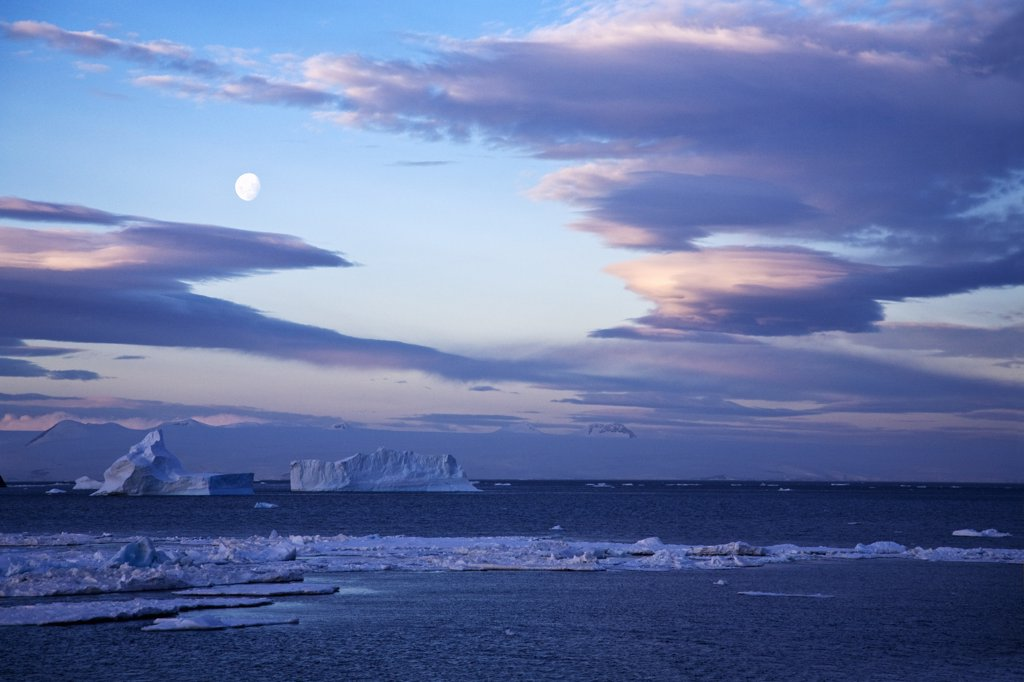 Stock Photo: 4042-699 Tabular icebergs in the ocean at dusk, Antarctic Peninsula, Antarctica