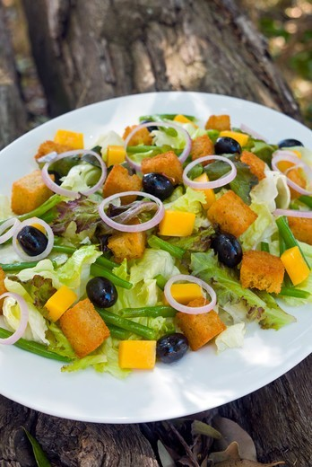 Stock Photo: 4045-1186 Kenya, Masai Mara National Reserve, Close-up of Mix salade
