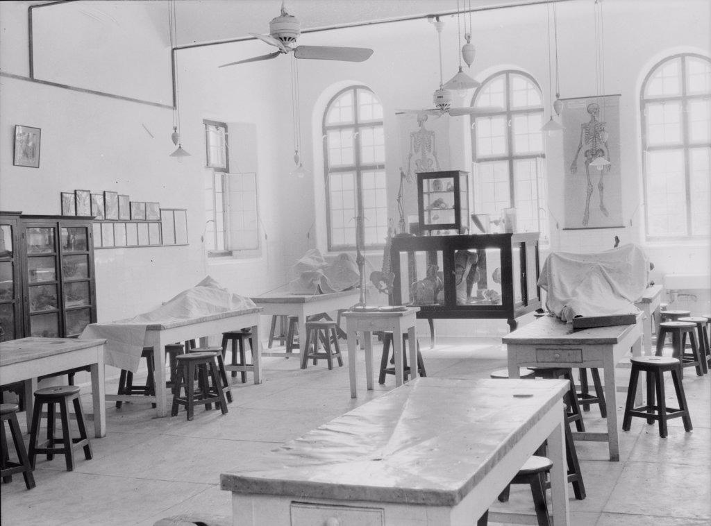 Stock Photo: 4048-4063 Medical College, Baghdad and road building, medical classroom, Iraq, photograph September 26, - October 12, 1932.