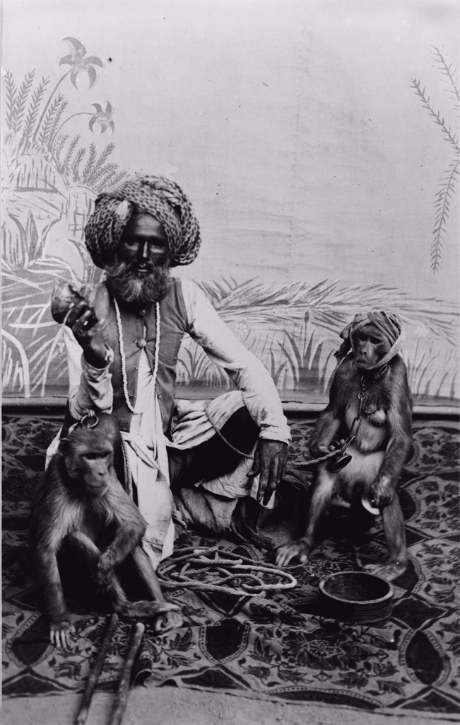 Portrait of an Indian Fakir with monkeys, India, photograph, circa 1900s-1920s. : Stock Photo