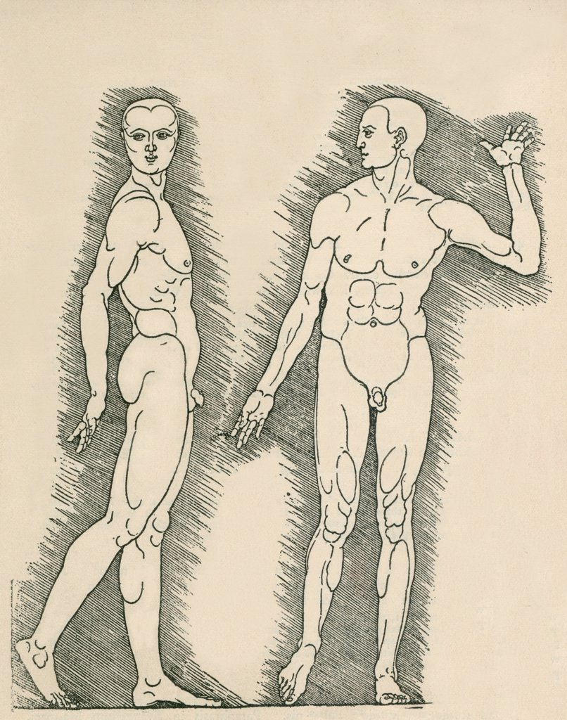 Stock Photo: 4048-6136 Plate from Albrecht Durer's, VIER BUCHER VON MENSCHLICHER PROPORTION (Four Books on Human Proportion). Durer applied the science of human anatomical proportions to aesthetics. 1528 engraving.