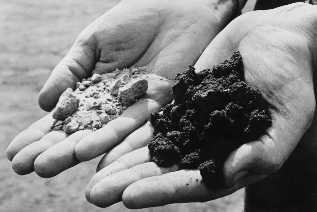 Stock Photo: 4048-7034 Two varieties of sand from an oil drilling district. The hand on the left holds dry, oil-less sand, while the other holds sand rich and dark with oil. Finding oil-soaked sand in a test-boring indicates that the chances of striking oil are good. Ca. 1944.