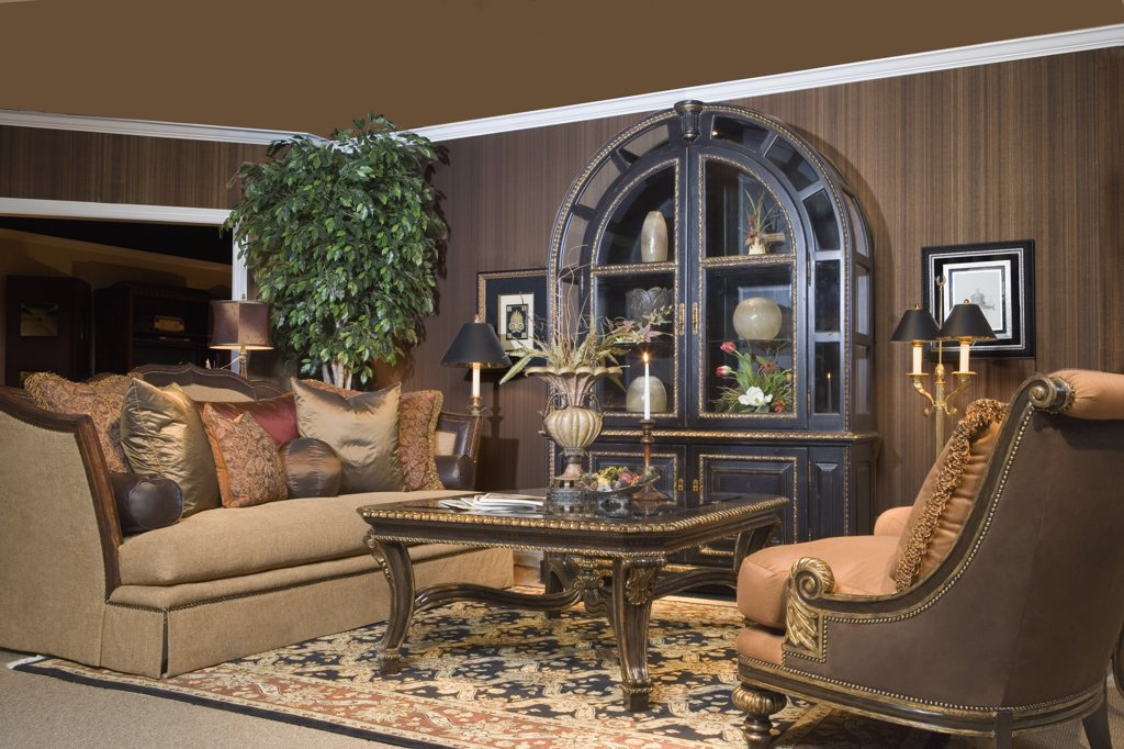 LIVING ROOM: Set ups in a furniture store, arched display cabinet, wood brown walls silk plant in left corner : Stock Photo