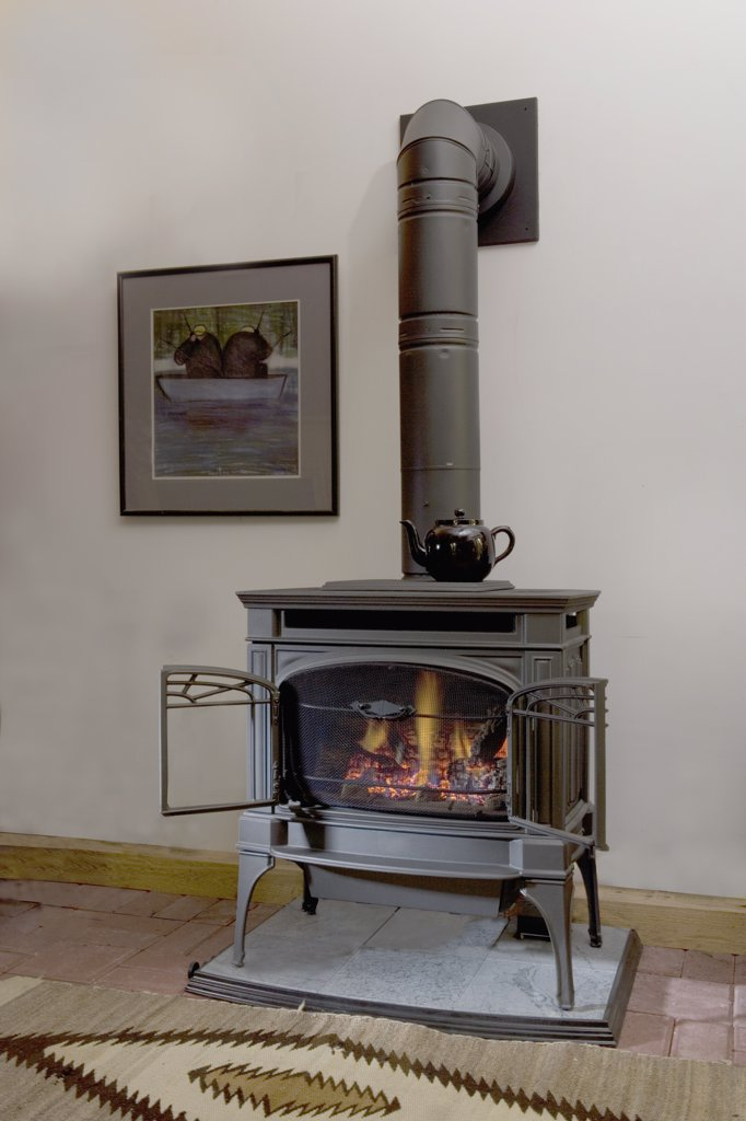 FIREPLACES: Lopi, gas burning stove, looks like a wood burning stove, direct vent, open doors : Stock Photo