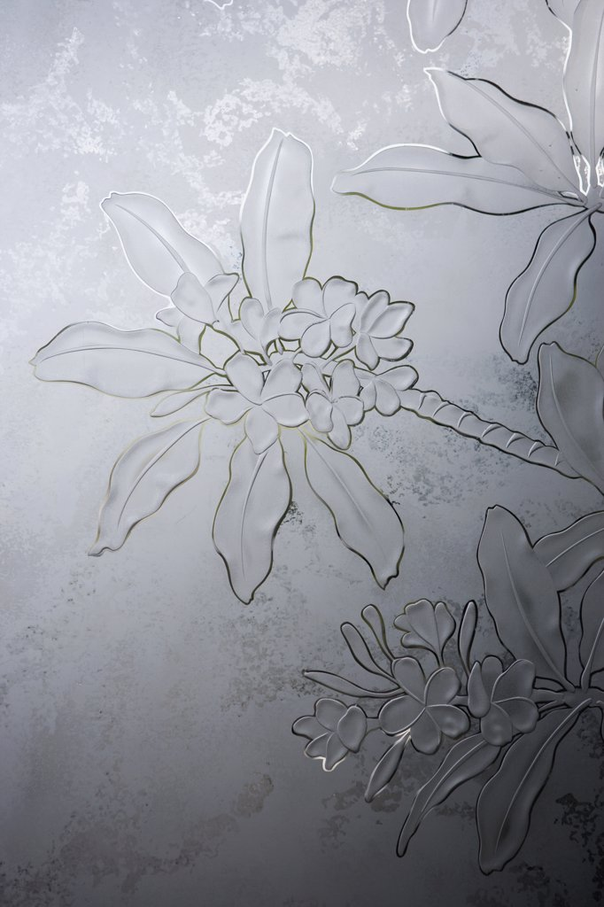 Stock Photo: 4053-1719 Floral pattern etched in glass