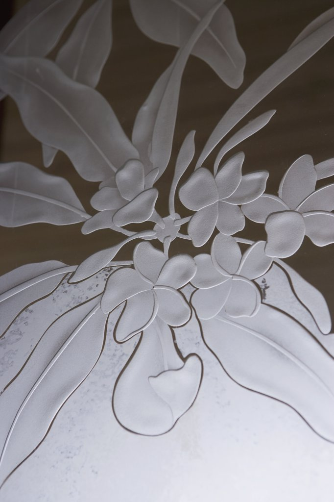Stock Photo: 4053-1721 Floral pattern etched in glass
