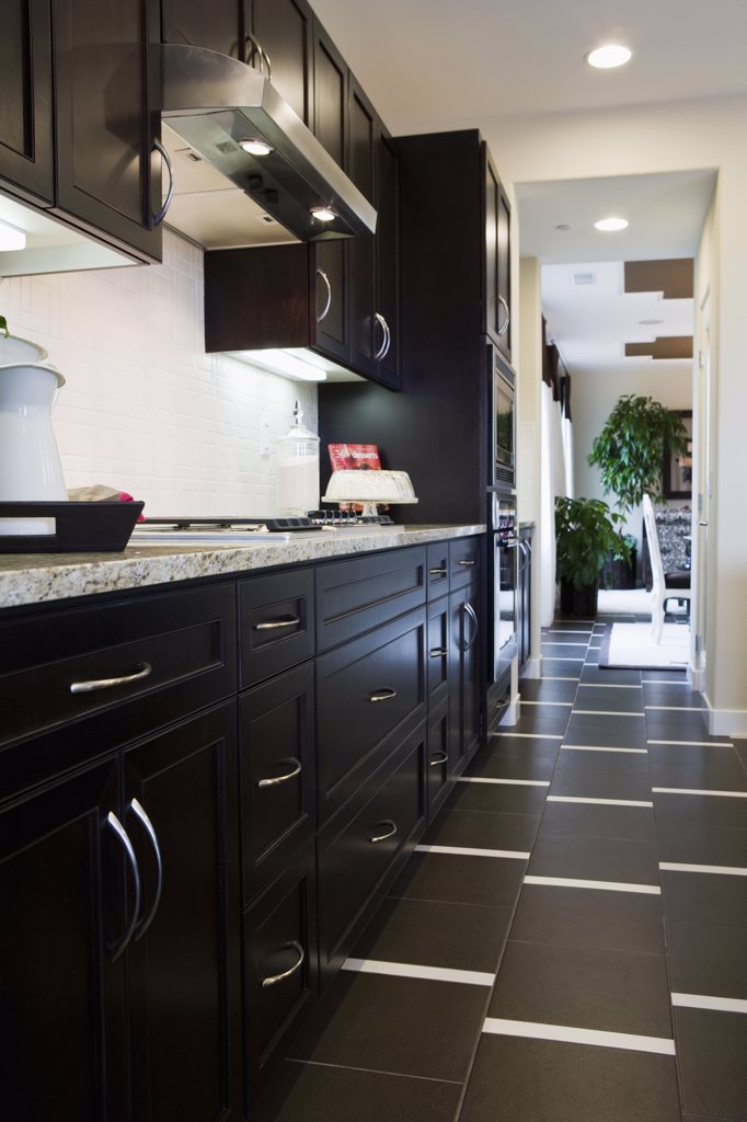 Vinyl floor in contemporary kitchen : Stock Photo