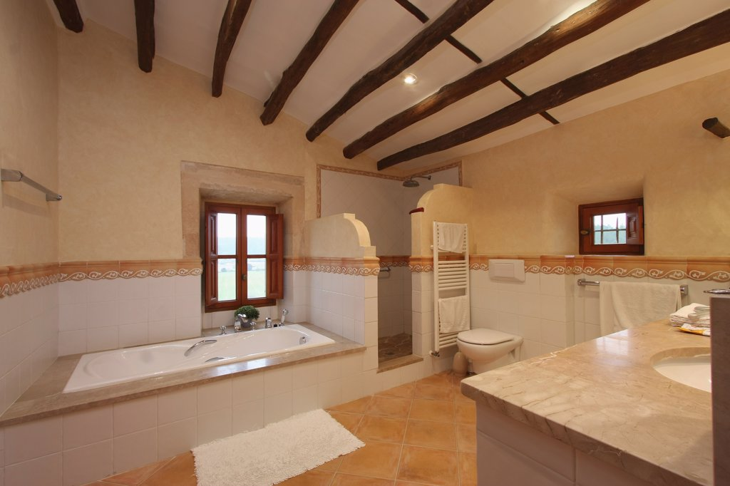Clean bathroom with wooden ceiling beams : Stock Photo