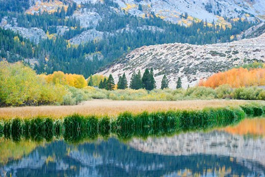 North Lake Reflection, Eastern Sierra, California : Stock Photo