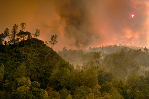 50,000 acre California wildfire at Henry Coe State Park south of San Jose fought by CAL Fire CDF - California Department of Forestry and Fire Protection : Stock Photo