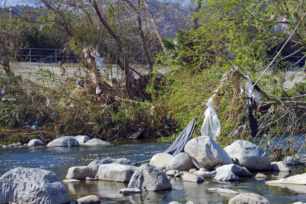 Plastic Bags left from runoff from recent rains, Glendale Narrows, Stop on Folar's tour of the LA River, Los Angeles, California, USA : Stock Photo