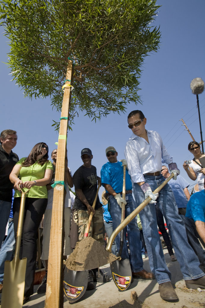 Mayor Antonio Villaraigosa at a tree planting along Mission Road in East Los Angeles, part of the Mayor's Million Trees LA Initiative. Los Angeles, California : Stock Photo