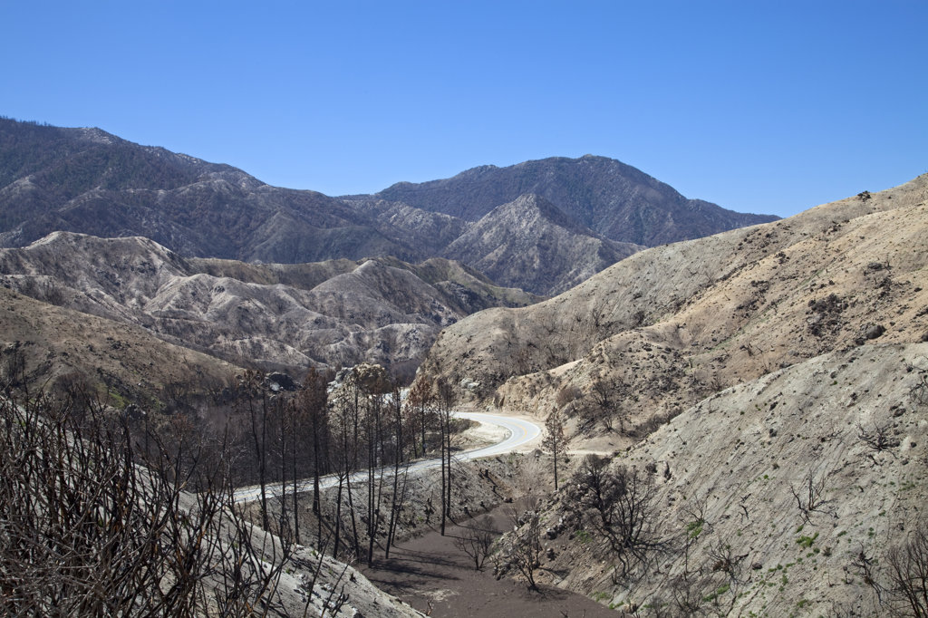 Stock Photo: 4055-5815 In April, 2010, about six months after the Station Fire, re-growth has yet to appear in some of the burn areas of the in Angeles National Forest.