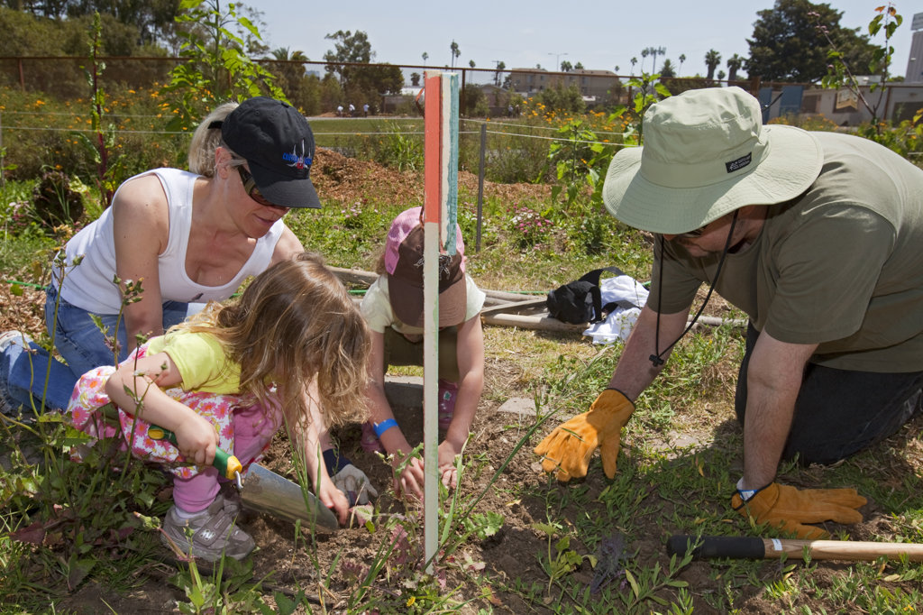 Students, parents and teachers work on the garden at the 24th Street School garden on Big Sunday, the largest annual citywide community service event in America, West Adams, Los Angeles, California, USA : Stock Photo