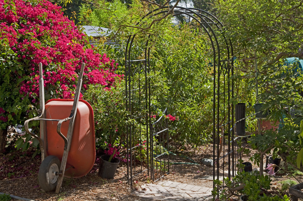 Edendale Farm is a model of permaculture and urban farming, a closed system of organic gardening, water and energy conservation and sustainable design. Silver Lake, Los Angeles, California, USA : Stock Photo