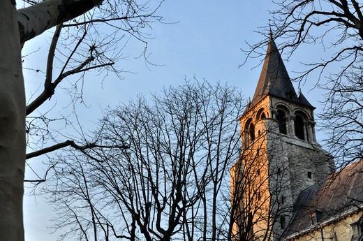 Low angle view of bare trees in front a church, Abbey of Saint-Germain-des-Pres, Paris, France : Stock Photo