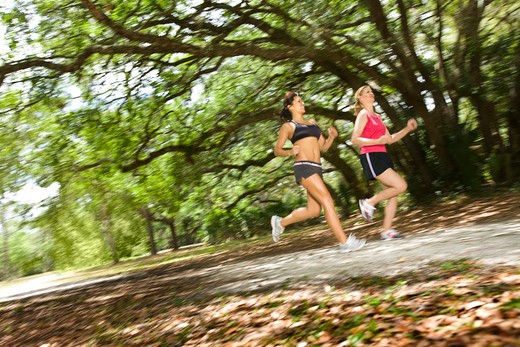 Two women jogging in a park : Stock Photo