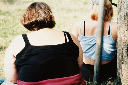 Backs of Overweight Women Sat in a park; UK 2000's : Stock Photo