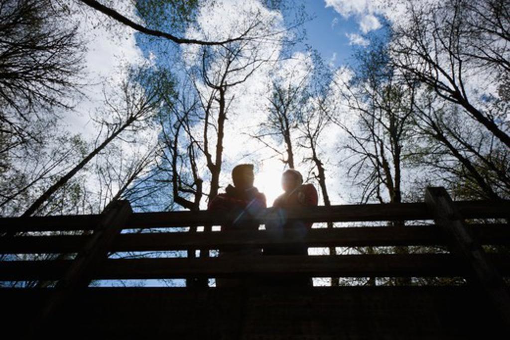 Portland, Oregon, USA, Couple on bridge in forest : Stock Photo