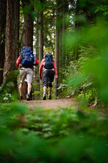 Portland, Oregon, USA, Couple walking on trail through forest : Stock Photo