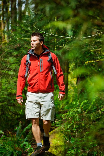 Portland, Oregon, USA, Man walking on log in forest : Stock Photo