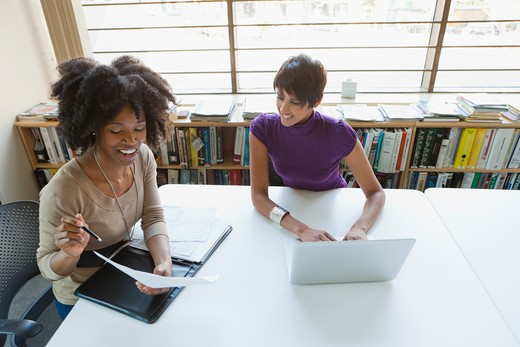 Two businesswomen working on project in office : Stock Photo