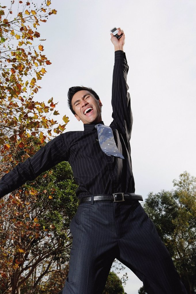 Businessman jumping in air, arm raised in victory : Stock Photo