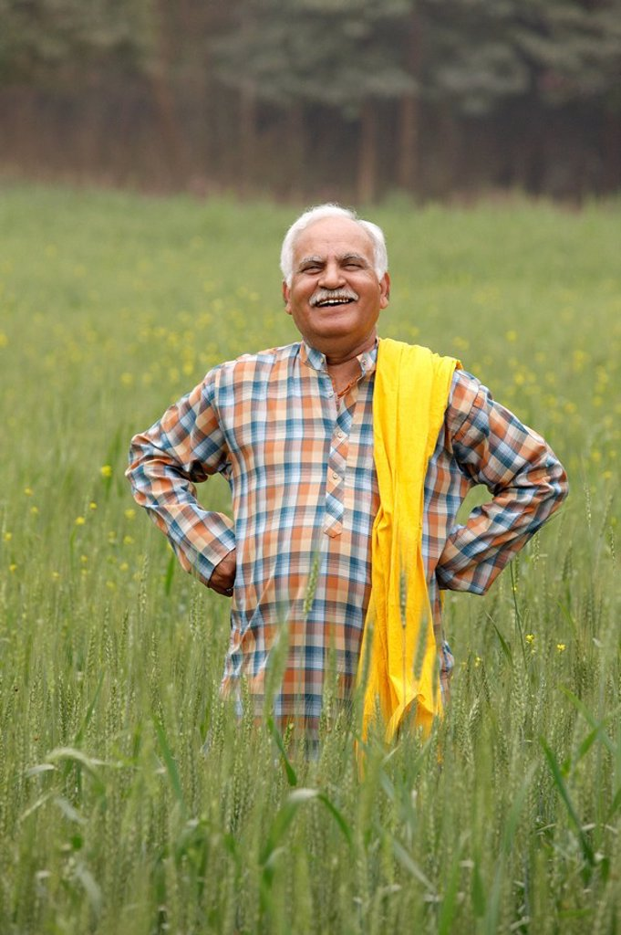 Farmer in field : Stock Photo