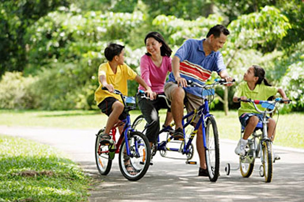 Stock Photo: 4065-1260 Family in park, riding bicycles