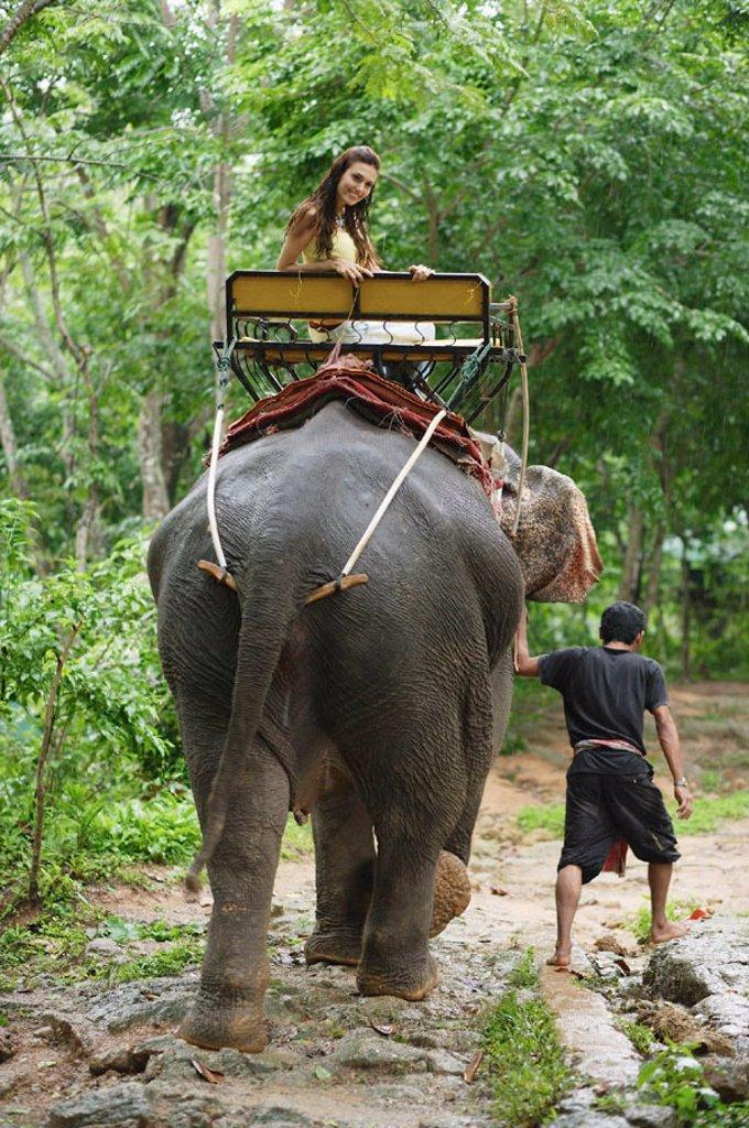 Stock Photo: 4065-13086 Female tourist riding an elephant, Phuket, Thailand