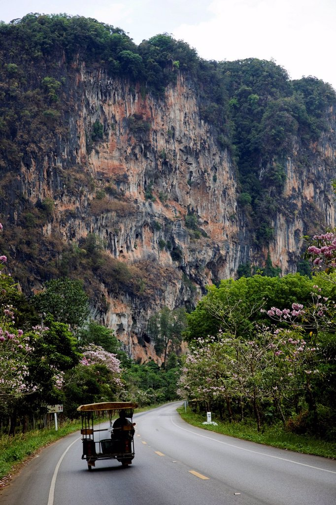 Stock Photo: 4065-20022 Thailand,Krabi,Karst Cliff