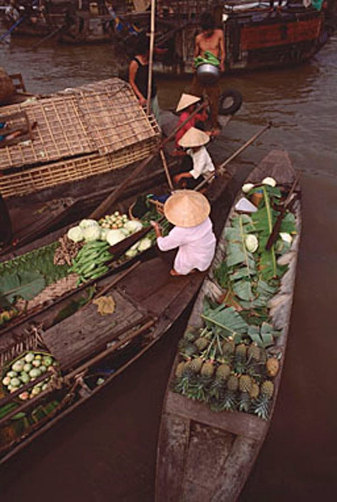 Vietnam, Can Tho, Hau river, Fruit and vegetable sellers, floating market. : Stock Photo