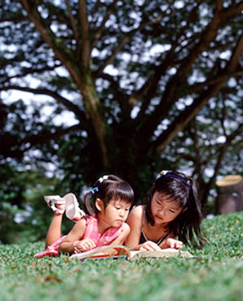 Stock Photo: 4065-6519 Two children lying on grass reading a book