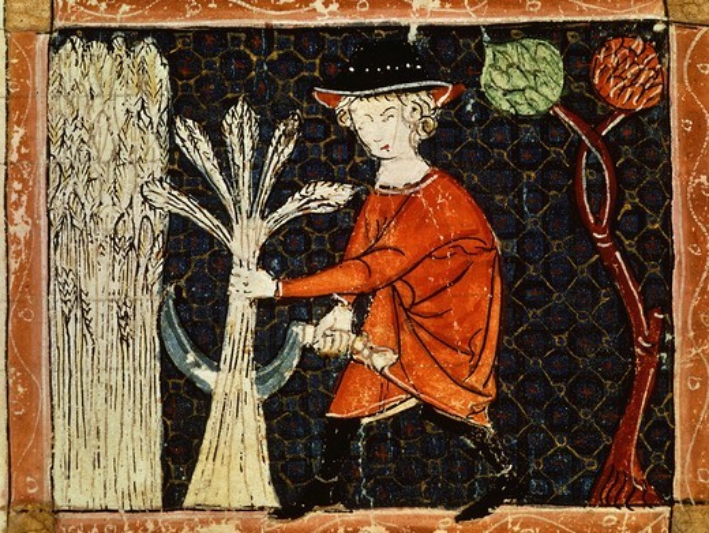 Stock Photo: 4069-2451 Harvest, July, folio 58V of Breviary of Love, 13th century Provenìal codex