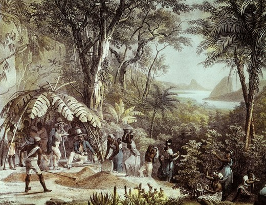Stock Photo: 4069-4630 Black slaves carrying coffee harvest, early 19th century engraving by Johann Lorenz Rugendas, 1775-1826 German