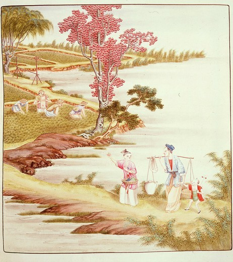 Stock Photo: 4069-525 Tea planting and family with tea pot by unknown Chinese artist, 19th century