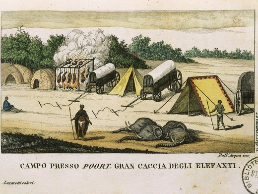 Elephant hunt at camp near Poort, South Africa, from 1783 Travels into the Cape of Good Hope into the Interior Parts of Africa, published 1786, by Francois Le Vaillant, 1753-84 French traveller and ornithologist : Stock Photo