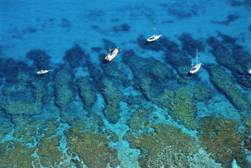 Stock Photo: 4070-10563 Aerial view of boats and snorkelers, Looe Key Reef, Florida Keys National Marine Sanctuary, USA, showing spur and groove coral formations.