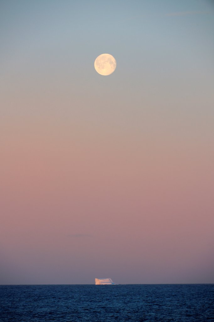 Icerberg at sunset with full moon, in Davis Strait, off south Baffin island, Nunavut, Canada,  August 2010 : Stock Photo