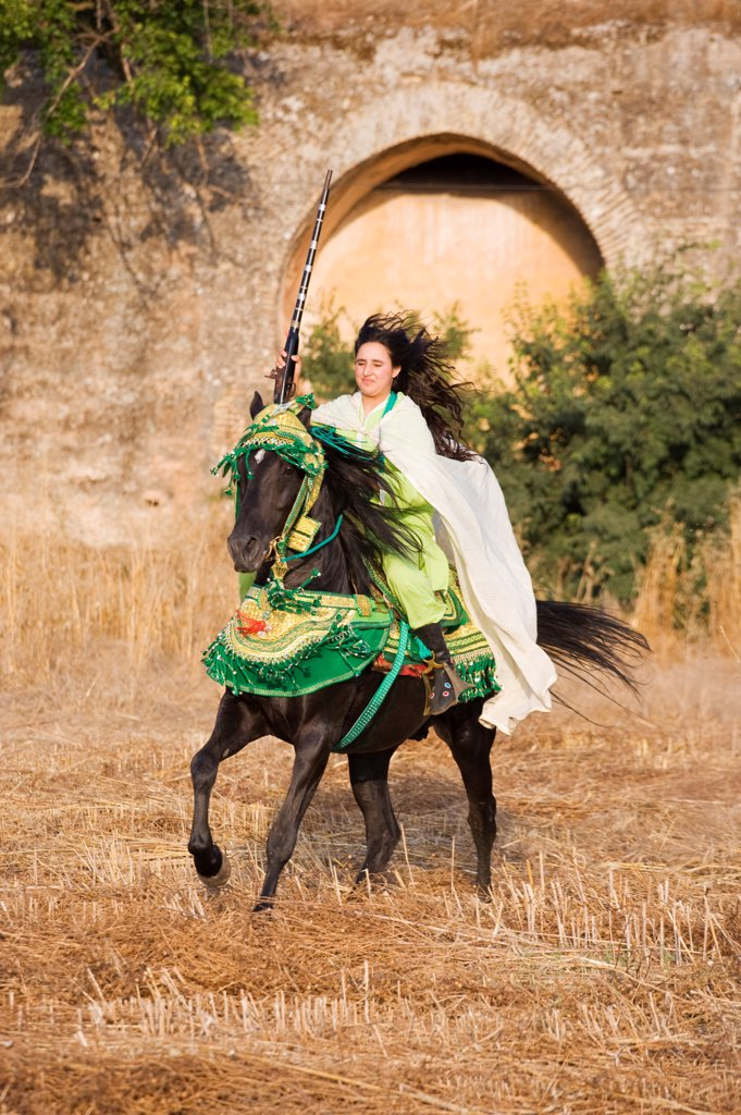 Stock Photo: 4070-18141 A young Berber woman rides a black Arab Barb stallion in Morocco. Both are dressed in traditional costume for the Fantasia. Model Released, June 2010