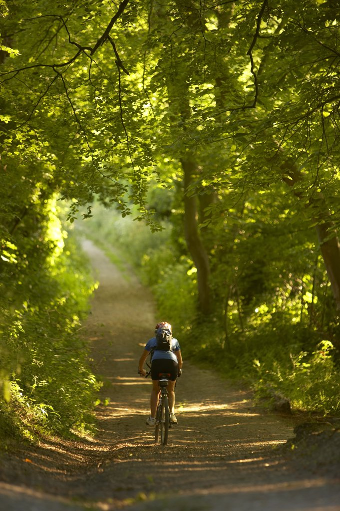 Stock Photo: 4070-8556 Woman on mountain bike cycling down leafy country lane nr Child Okeford, Dorset, England, UK