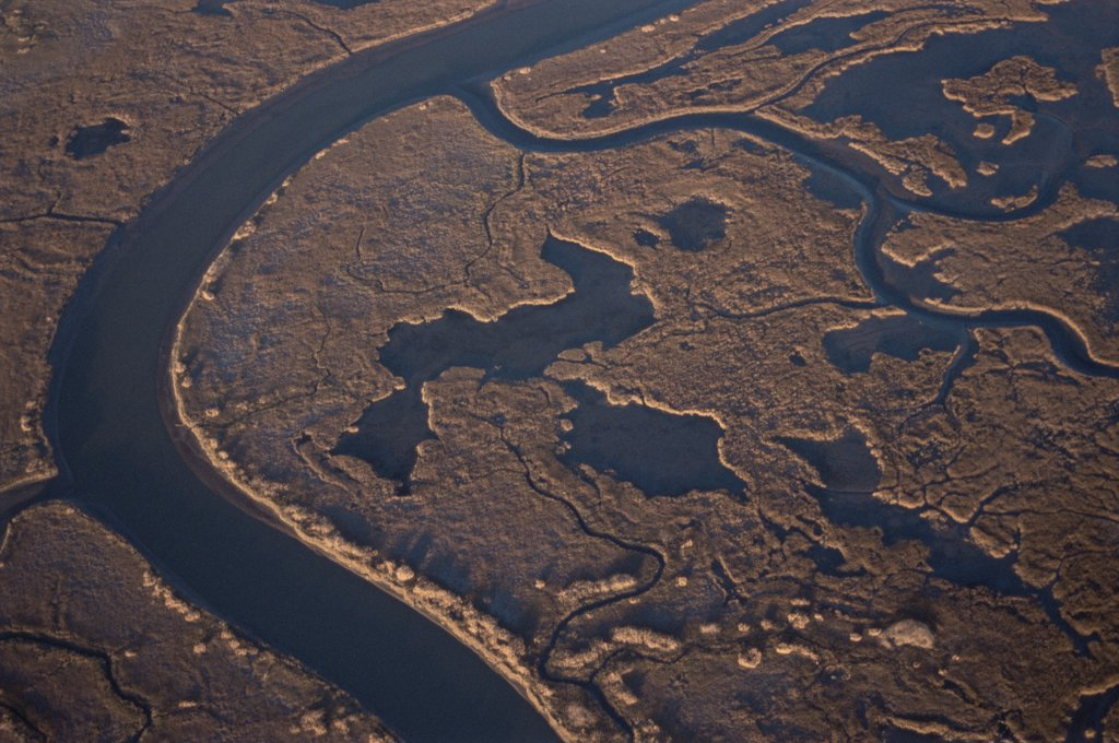 Aerial view of Bombay Hook NWR, Delaware Bay, Delaware, USA.  Salt marsh and refuge for migratory flocks of Greater snow geese.November 2005, BBC Planet Earth : Stock Photo
