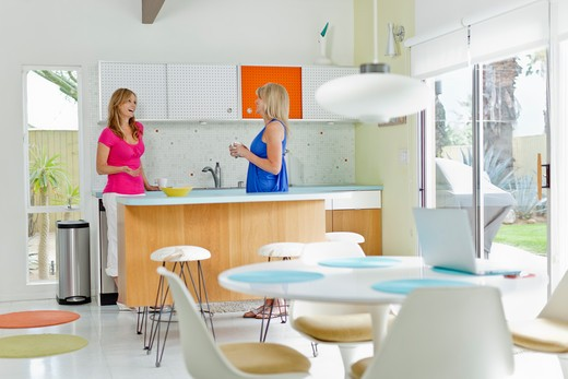 Mature woman with her friend standing in the kitchen : Stock Photo