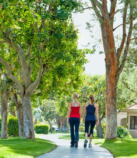 Stock Photo: 4072R-154A Two mature women walking in a park
